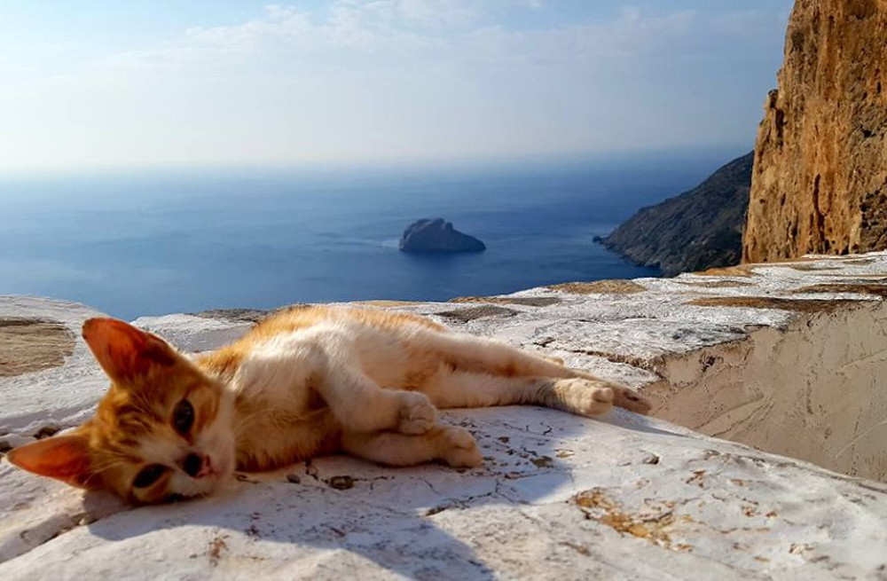 Amorgos self-guided walking 1