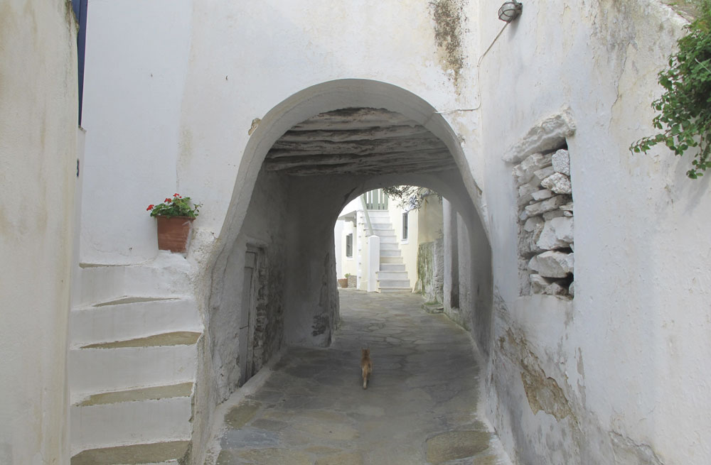 Tinos walking holiday 3