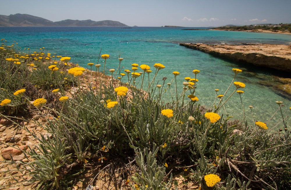 Cyclades sailing & walking holiday 28