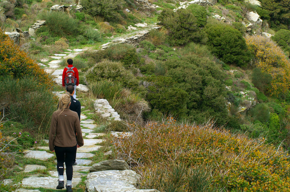 Andros & Tinos walking holiday
