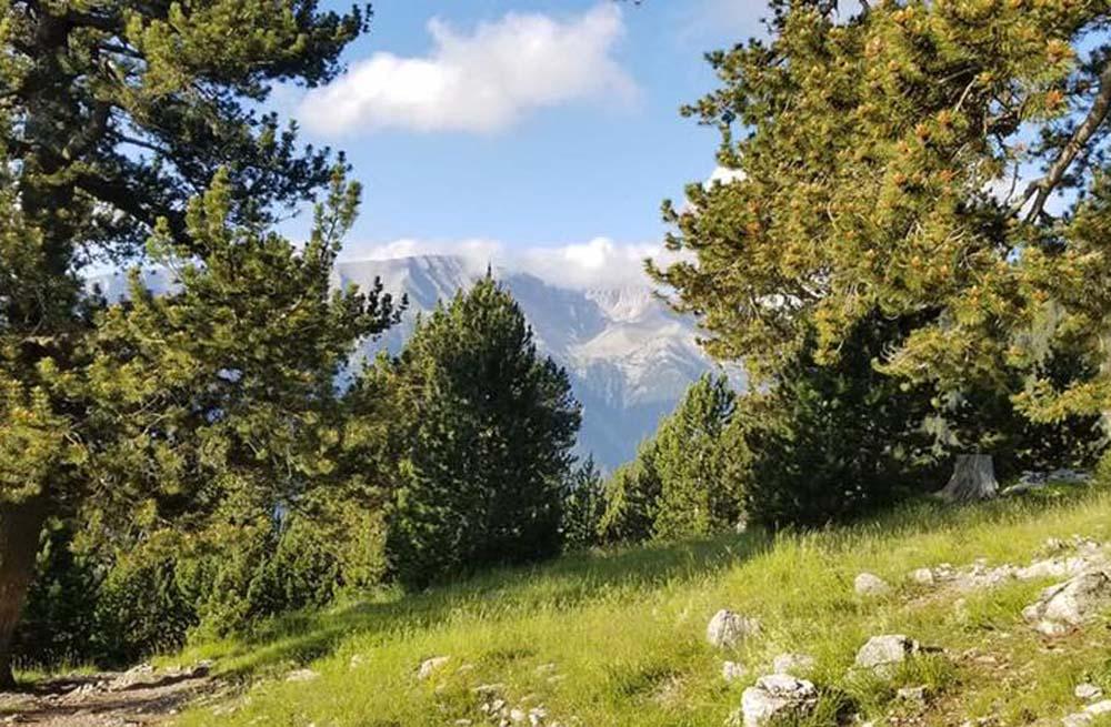 Mount Olympus & Meteora hiking 15