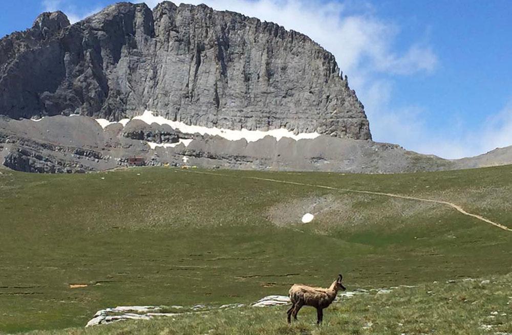Mount Olympus & Meteora hiking 17