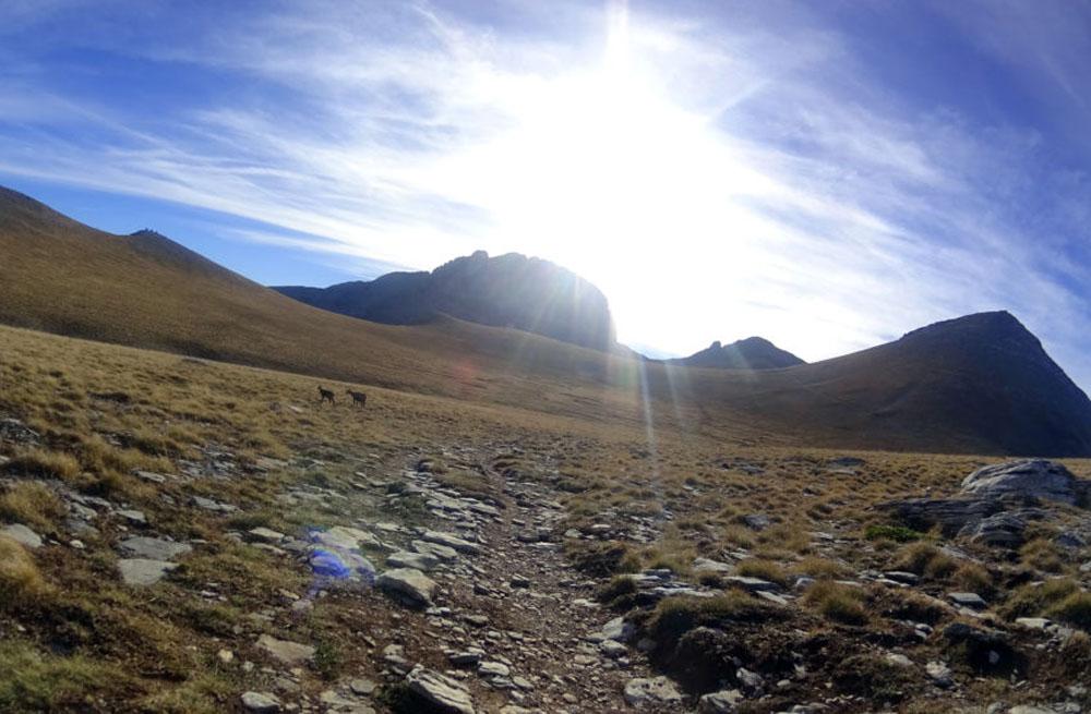Mount Olympus & Meteora hiking 21