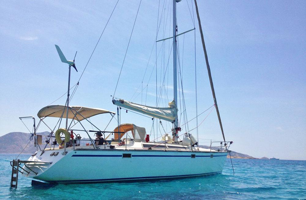 Cyclades wildlife sailing 1