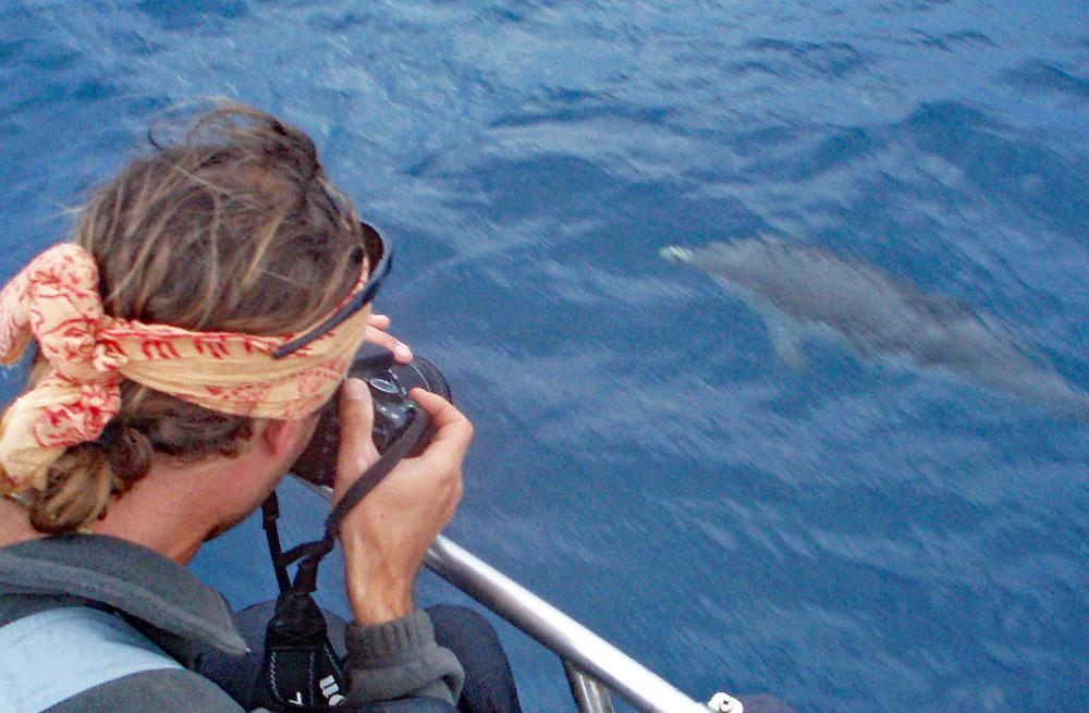 Cyclades wildlife sailing holiday 19