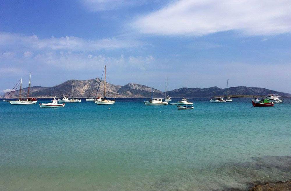 Cyclades wildlife sailing holiday